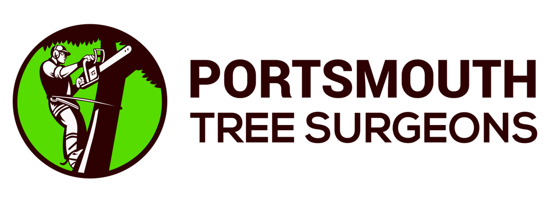 Picture of tree surgeons in portsmouths logo, tree surgery for portsmouth and surrounding areas